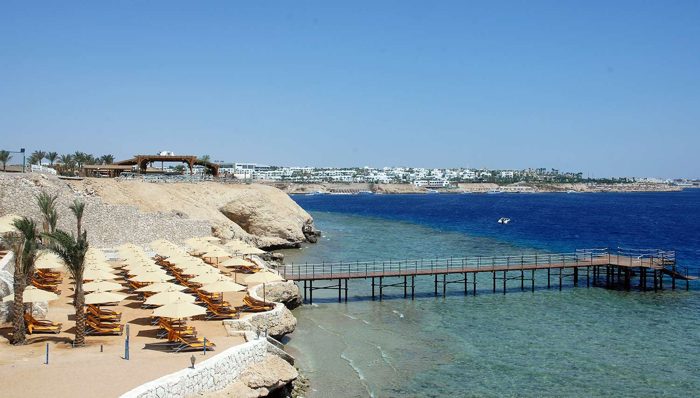 10 лучших отелей Египта для любителей кораллов и рыбок